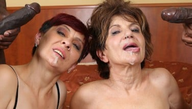 Grannies Gonzo Smashed Multiracial Pornography With Old Damsels Liking Dark-hued Cocks