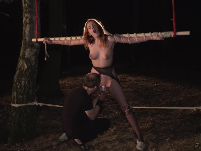 Tied Up Fucked Screaming